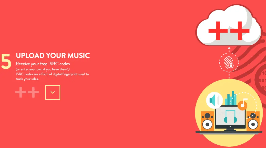 ditto music distribution review